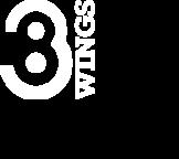38 Wings